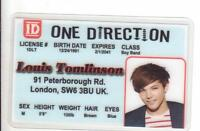 Louis Tomlinson ONE DIRECTION novelty plastic collectors card Drivers License