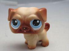 Littlest Pet Shop LPS Pug dog 1312 blue eyes