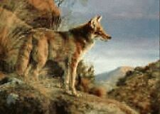 Jorge Mayol Hand Signed Numbered Limited Edition Evening Calm Coyote