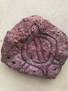 Old Stone Turtle Carved / Natural earth pigment Stone