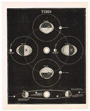 ANTIQUE PRINT VINTAGE 1860 ASTRONOMY STAR ORIGINAL WOOD BLOCK TIDES & ORBITS