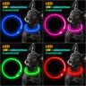 elanox LED Hundehalsband wiederaufladbar für alle Größen Hundehalsband USB