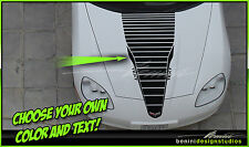 2006 - 2013 C6  Chevy Corvette Hood Racing Stripes Decals Graphics Style 3