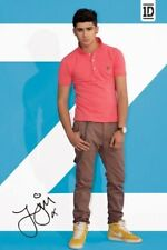 One Direction Poster Zayn Blue Standing