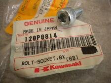 NOS Kawasaki OEM Motor Starter Socket Bolt 8X14 83-07 ZN1300 EX250 120P0814