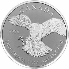 2016 Canadian Birds Of Prey Series Peregrine Falcon Reverse Proof Silver Coin