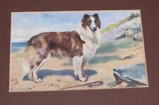 Antique 1909 Matted Framed Postcard Scotch Collie Dog Drummond England Oilette