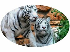 Motor home Caravan Camper Horse box Tiger Stickers Mural Decal Graphic mh1-91
