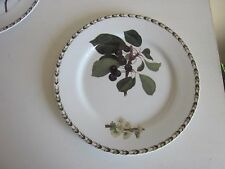 """Queens Fine Bone China Hookers Fruit Salad  Plate 8 3/4"""""""