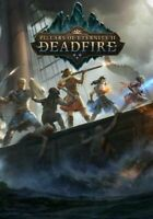 Pillars of Eternity 2 Deadfire | Steam Key | PC | Digital | Worldwide |