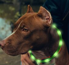 Pet Safety Led Light Up Flashing Dog Collar Glow In  Dark USB Rechargeable Green