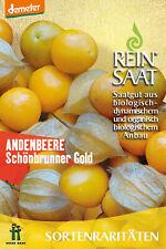 Reinsaat CV10 Andenbeere Schönbrunner Gold (Bio-Beerensamen)