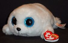 """TY BEANIE BOOS - ICY the 6"""" SEAL - MINT with LIGHT CREASE on TAG"""
