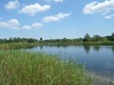 106600 qm   See; Grundstück; Wiese; Polen; Opole; Opeln; Ortsteil Groszowice