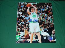 Celtics Brian Scalabrine Autographed 8x10 Photo