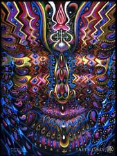 Trippy Alex Grey Abstract Art Print Poster 30x24/'/' inch