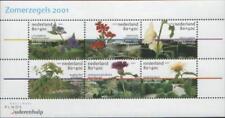 Nederland NVPH 1973 Blok Zomerzegels 2001 Postfris