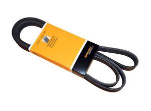 Serpentine Belt CRP PK060806
