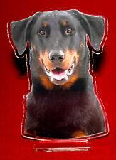 statuette photosculptée 10x15 cm chien beauceron 12 dog hund perro cane