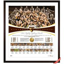 HAWTHORN 2013 PREMIERSHIP TEAM HAND SIGNED FRAMED DELUXE PRINT HODGE MITCHELL
