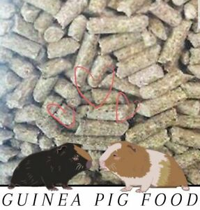 Guinea Pig Food Pellets Timothy-Based Hi Protein (Choose Size/Quantity)