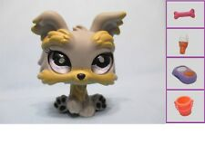 Littlest Pet Shop Dog Puppy Yorkie Realistic Eyes 883 Authentic Lps