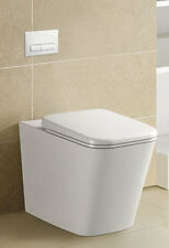 WELS Back to Wall Ceramic Toilet Bowl only design for inwall cistern, S & P trap