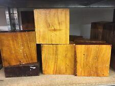 """Osage Orange Bowl Blanks Woodturning/Exotic Wood 6x6x2"""" Exotic Hardwoods"""