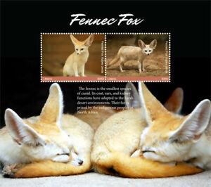 Liberia 2017 - Fennec Fox - Souvenir Sheet - MNH