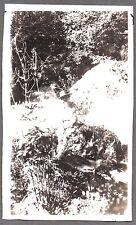 1919-21 CANTARA LOOP DUNSMUIR CALIFORNIA SACRAMENTO RIVER LADY POSES OLD PHOTO