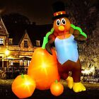 7ft Inflatable Turkey W/Carrots LED Lighted Airblown Thanksgiving Outdoor Yard D