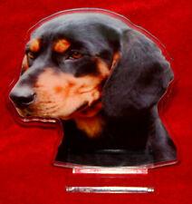 Cane : dog, beagle, walking