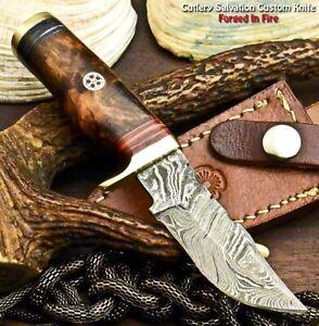 Rare Custom Hand Made Damascus Steel Blade Hunting Miniature Knife   Walnut Wood