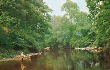 Bridge of Allan : Allan Water