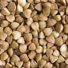 Organic raw sarrasin 500g-gratuit uk livraison