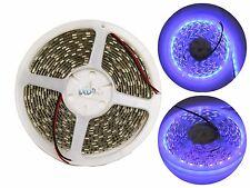 5M 5050 SMD Purple Violet UV Flexible 300 LED Strip Light Waterproof IP65 DC12V