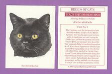 IMPERIAL PUBLISHING LTD.  -  CAT  CARD  -  BLACK  BRITISH  SHORTHAIR  -  2000