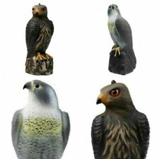 Fake Realistic Eagle Hunting Decoy Bird Pigeon Scarer Scarecrow Hunting Garden