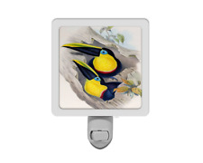 Vintage Style Tropical Toucan Bird Parrot Nature Animal Night Light