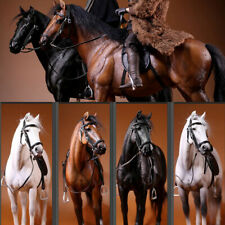 1:6 Scale Mr.Z Animal Resin Simulation Toy Hanoveria Horse Figure 5 Color Model