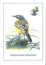 FDC 2725 - Oiseau Buzin sur gravure format A4 !
