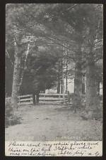 Postcard KEARSARGE NH The Dell View 1906? PRE -1907