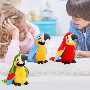 Rot Labertier Sprechender Papagei Vogel Chatter Laber parrot plappert alles nach