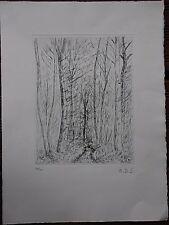 André DUNOYER DE SEGONZAC - Pointe-sèche gravure arbres le bois *