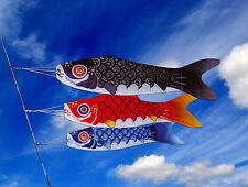 KOINOBORI manche à air poisson japonais 95 cm