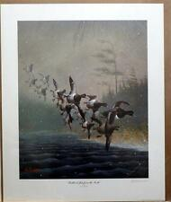Les Kouba Feathered Jets From the North SN Print Still in Shrink Wrap 19.5 x 24