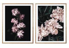 'Nightfall' + 'Raw Beauty' -  Large A2 size floral print set