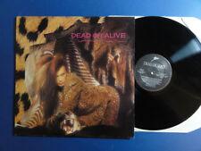 Dead OR ALIVE sofisticato Boom Boom Epic 84 A1B1 UK 1st PR LP EX/EX -