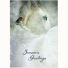 Personalised Equestrian Christmas Cards - Pack Of 20 - One Design