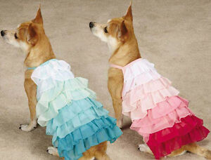 East Side Collection Ombre Ruffle Dog Tanks Tank Pink Blue Pet Dress Ruffles